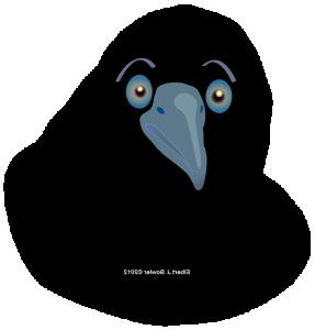 034navar